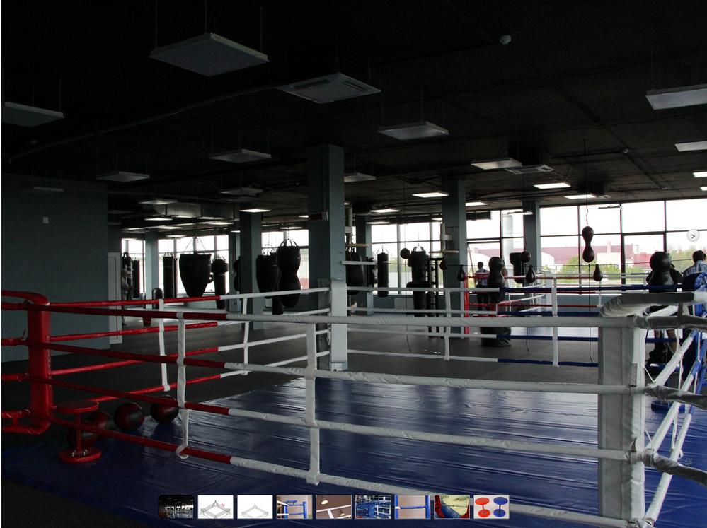 Боксерский ринг напольный тренировочный, ковер 7х7 канаты 6х6  (02020001)(Фото 1) 60aff40aec6