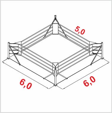 Боксерский ринг напольный тренировочный, ковер 6х6 канаты 5х5  (24623512)(Фото 1) 05c4b8443f8