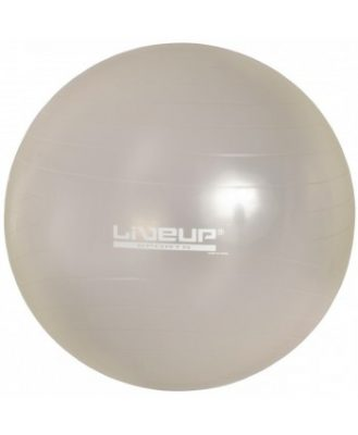 Фитбол GYM BALL LS3221-75g(Фото 1)
